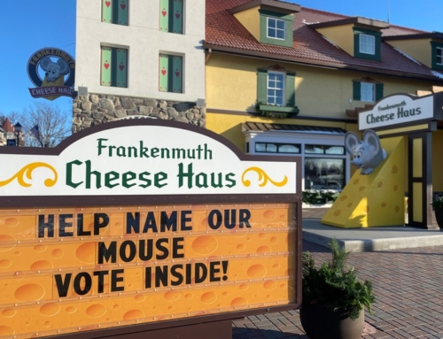 Frankenmuth mouse needs your help to get a name for his birthday