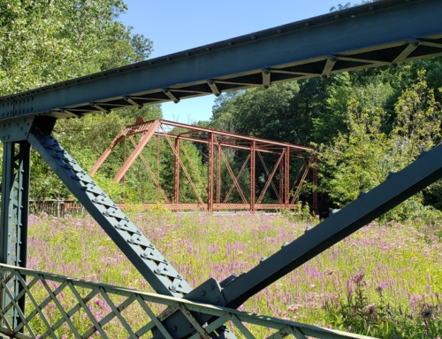 Discover Michigan's graveyard of bridges