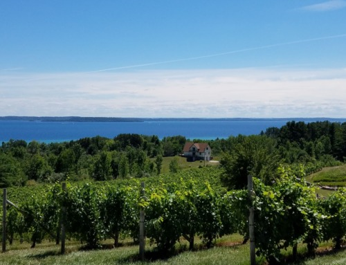 Michigan's 8 notable wine trails