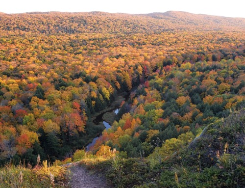 Best ways to view Michigan's fall color from up above.