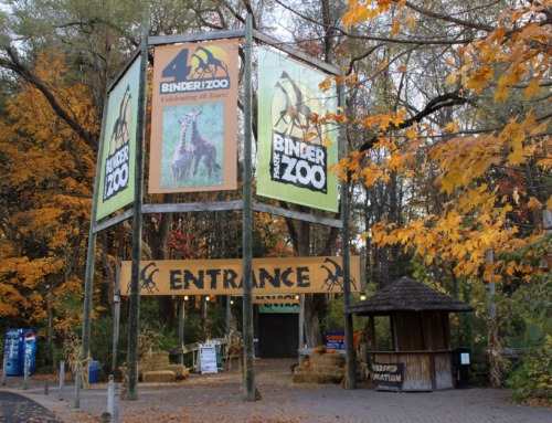 12 Things to do in Michigan in October 2021